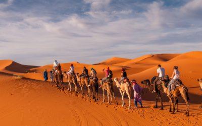 A trip in the desert
